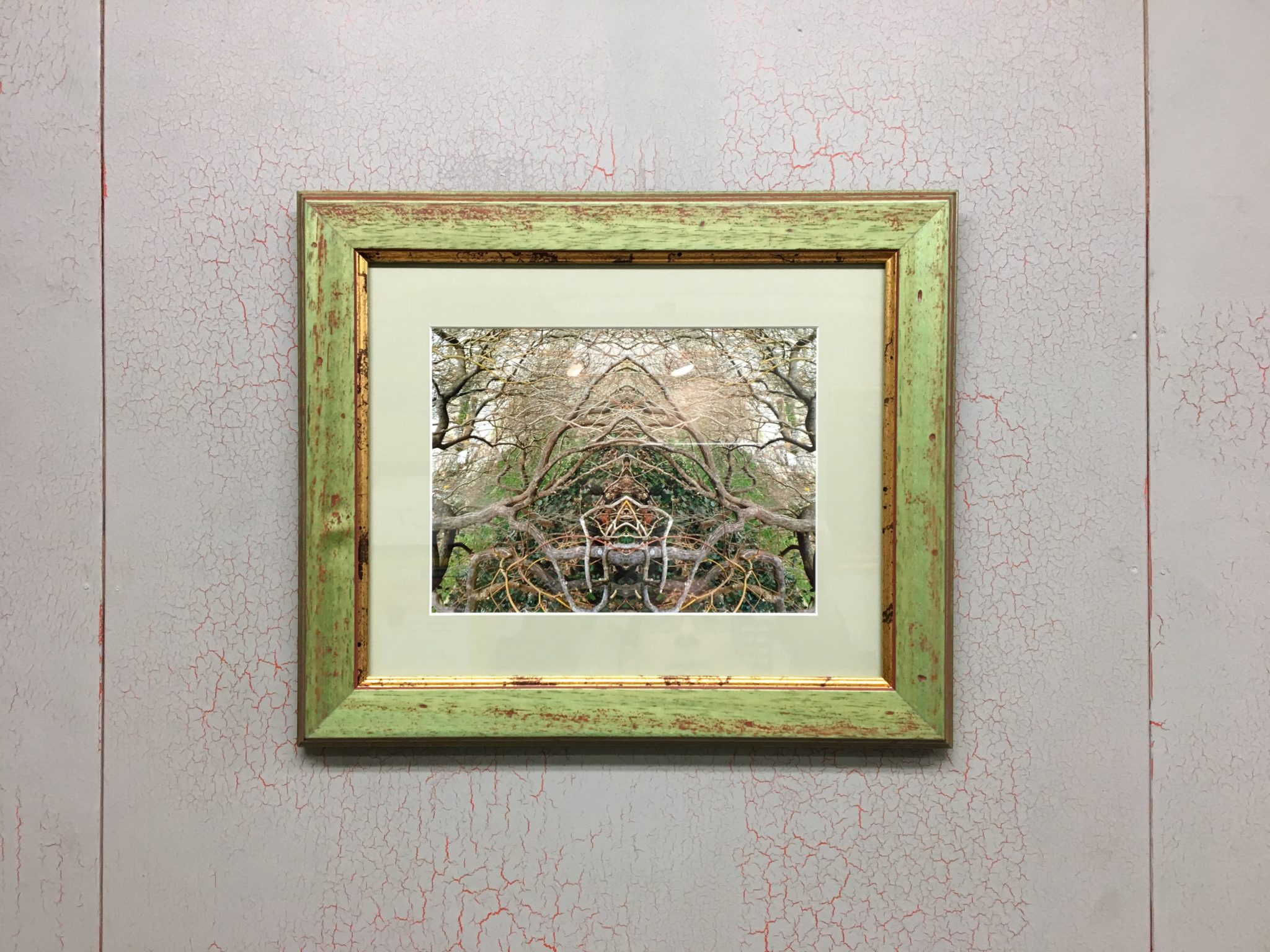 Original Photo Collage by Angela Yanni in a Rustic Frame Supplied by Omega Moulding
