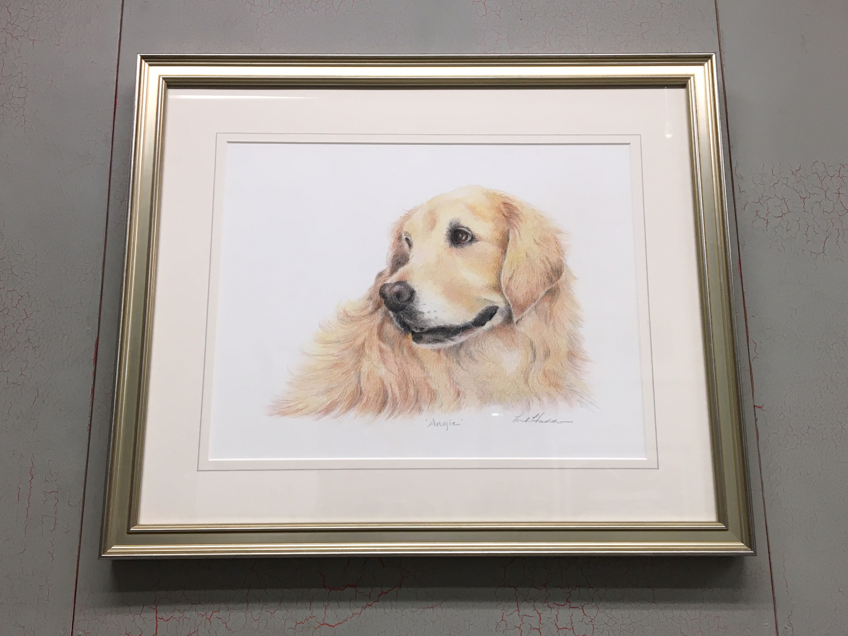 Charming Pet Portrait in an Antique Silver Custom Frame by Studio Moulding