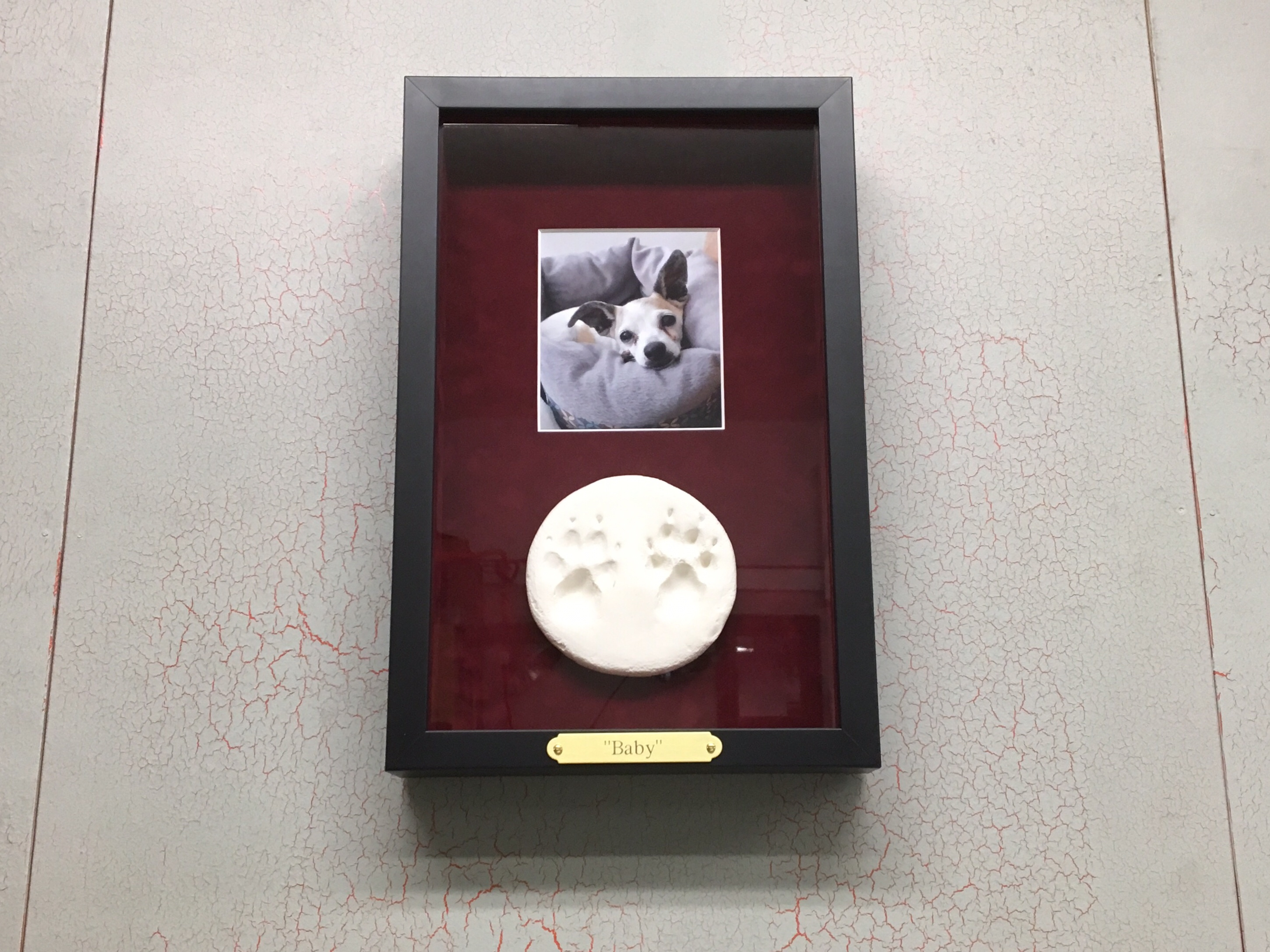 """A Touching Tribute to """"Baby"""" in a Custom Shadowbox Frame"""