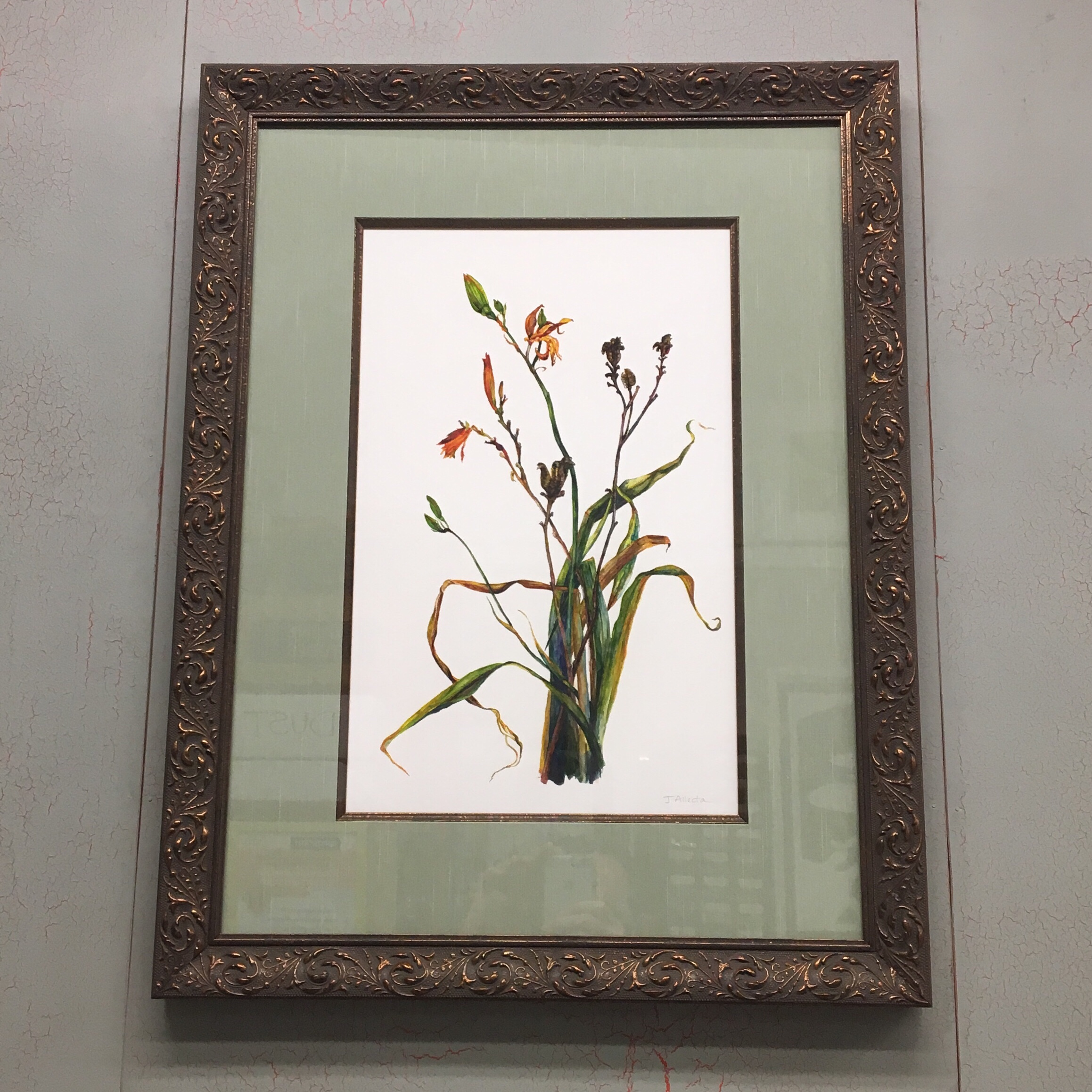 """""""Common California Daylily"""" Giclee Print by Julie Allecta Custom Framed with Larson Juhl's 'Nouveau' Moulding and Fillet with 'Willow' Hand Wrapped Fabric Mat. See more framing options at our Keswick Village showroom just north of Philadelphia in Glenside PA ( Pennsylvania ) , 19038 . Thousands of frame styles, prints, maps, limited editions, and more!"""