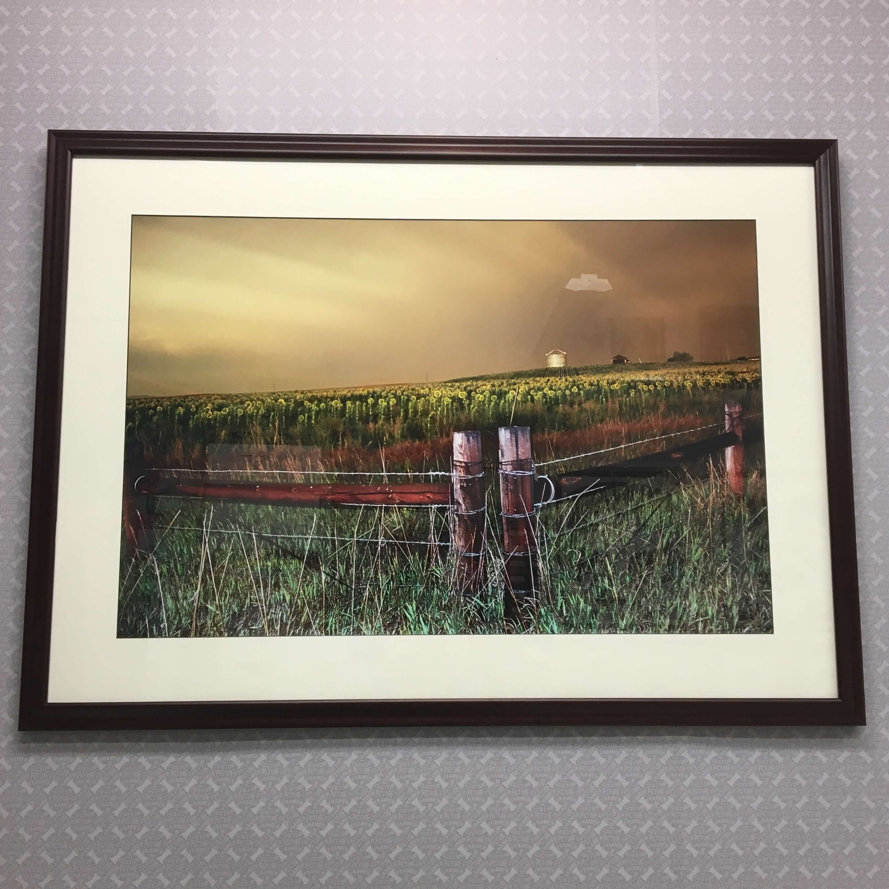 "This ""Fields of N Dakota"" photo is custom framed in a solid dark cherry swan profile with a black core mat and conservation glass. See more custom framing options at our Keswick Village showroom located just north of Philadelphia in Glenside PA ( Pennsylvania ) , 19038 . Custom Picture Framer of Glenside carries several thousand frame styles, prints, maps, limited editions, mirrors, and more!"